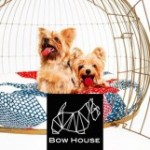 Bow House pet care gift certificates at Gifted.PH